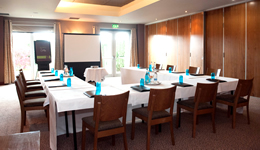 Meeting and Conference Facilities